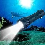 KANEED Torcia elettrica a LED, Torcia a LED impermeabile da 10W L2 con torcia a LED, lampada da immersione esterna 1000LM (nera)