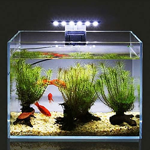 Hergon LED-Aquarium-Lampe, energiesparend, wasserfest <br>Wasserpflanzenbeleuchtung mit EU-Stecker (Aquarium Lava-lampen)