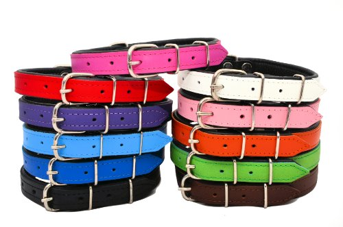 real-leather-dog-collar-black-padded-white-145-12cm-x-37cm