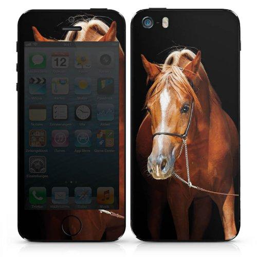 Apple iPhone SE Case Skin Sticker aus Vinyl-Folie Aufkleber Pferd Horse Stute Hengst DesignSkins® glänzend