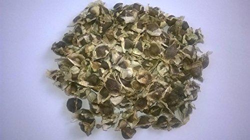 100-moringa-oleifera-graines-pkm1-quality