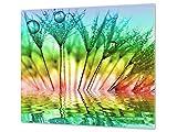 Concept Crystal Tagliere in Vetro temperato - Proteggi-Piano di Lavoro e spianatoia - Copri-Piano Cottura - Pezzo Unico (60x52cm) o Due Pezzi (30x52cm ognuno); D01 Serie Astratta: Dente di Leone 5