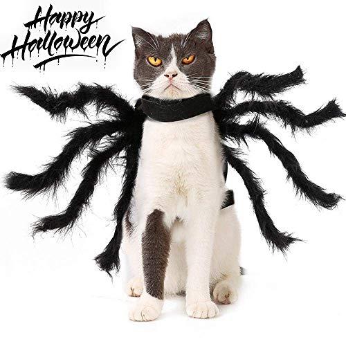 LIANGZHI Katze Halloween Kostüm Simulation Plüsch Spinne