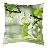 Die besten Pillowcase Home Fashion Kissen - Home Fashion Kissenhülle Digitaldruck, Samt, weiß, 1 x Bewertungen