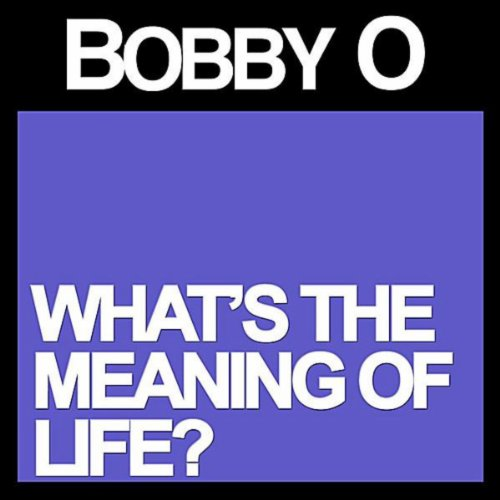 whats the meaning of life 2 essay What is the meaning of life this question only makes sense in the context of belief in a god who created life for a purpose.