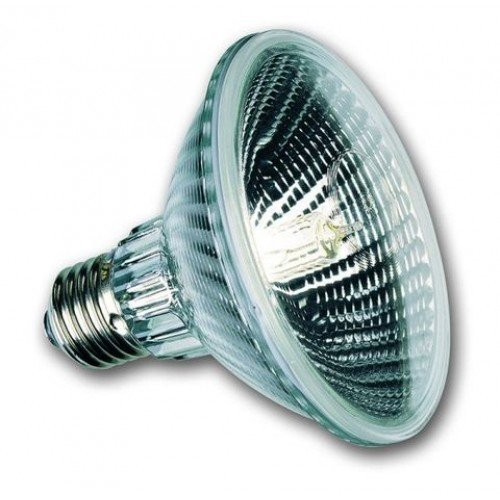Sylvania 143854 Halogen Lampe, 100W / 230V -