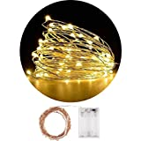 Lichterkette 100 LEDs 10M 100LEDs Fee-Lichter batteriebetriebene Schnur-Licht-wasserdichte Kupferdraht-Leuchtkäfer-Lichter, Weihnachtsbaum