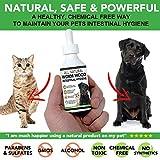 Tratamiento completamente natural para lombrices en perros y gatos | Más fácil de administrar que las pastillas | Suministro para 1-2 años | El producto más sano para eliminar las lombrices