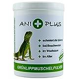 AniPlus - Grünlippmuschelpulver 500 g fördert den Aufbau der Gelenke bei Reptilien & Amphibien