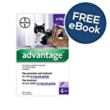 Advantage 80 – Large Cats & Rabbits – INCLUDES FREE EXCLUSIVE PETWELL® FLEA AND TICK E BOOK