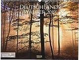 Deutschlands Wälder 2019: PhotoArt Wandkalender. Bildkalender von der Natur im Wald. Querformat: 44x34 cm