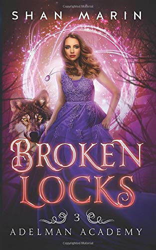 Broken Locks (Adelman Academy, Band 3) -