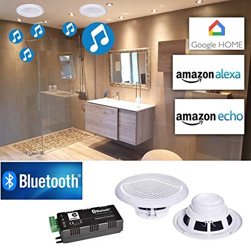 e Audio Paire d'haut-parleurs Marins Résitants à l'humidité B300C avec Amplificateur 30W Google Home Bluetooth Amazon Alexa Echo