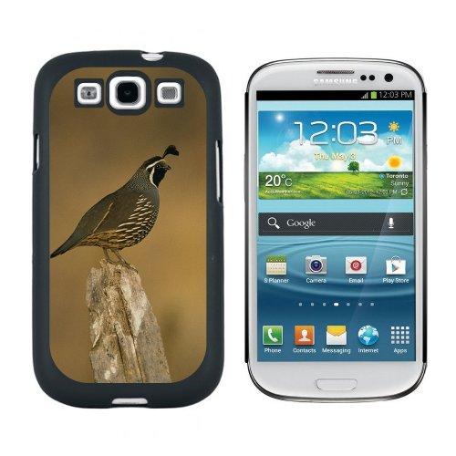 California Wachtel–Bird–Snap on Hart Schutzhülle für Samsung Galaxy S3, Schwarz (Galaxy S 3 Sprint Phone)