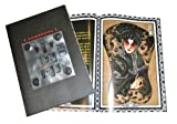 Chinese Tattoo Flash Design Book Art A3 - Monsters, Beasts & Buddhists