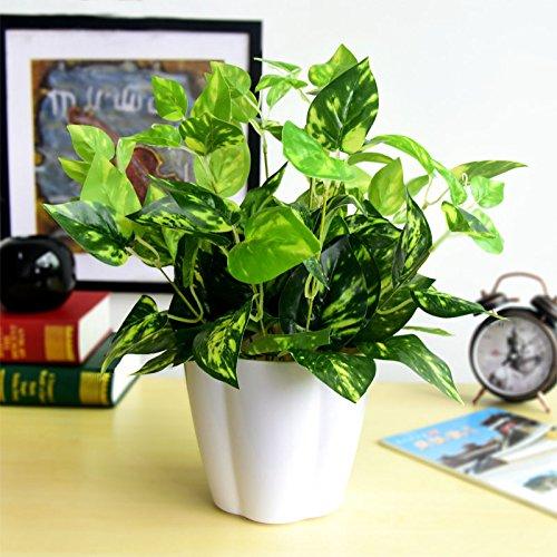 Die Simulation von Bonsai Pflanzen Pflanzen Topfpflanze Kunststoff dekorative kleine Topfpflanzen Grünpflanzen und indoor Simulation Simulation Scindapsus, eine mittlere Schüssel aus Kunststoff (Indoor-gras Fake)