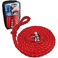 Cartrend 50235 Tow rope, 4 tons, length 3.5 m with handy zipper bag, red