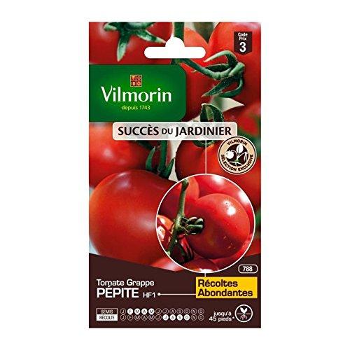 VILMORIN Sachet graines de Tomate grappe PEPITE - Création VILMORIN