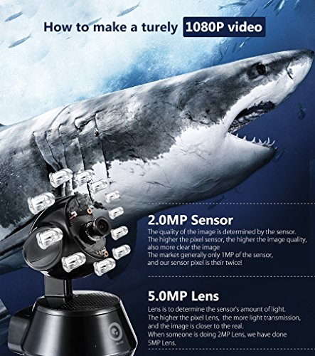Digoo DG-M1Z 1080P SHARK 2 8mm 5 0MP Lens Super Ultra Clear Wired Wireless  Security Wifi IP Camera Night Vision Two Way Audio Smart Home Video System