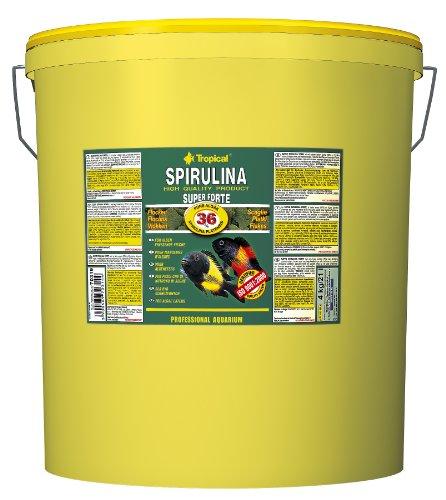 Tropical Super Spirulina Forte Flockenfutter mit 36{476bb00eef9b70b434a6693b8c70fefabb5388a23eed492ea86bd21d21d364f7} Spirulina (Platensis) Anteil, 1er Pack (1 x 21 l)