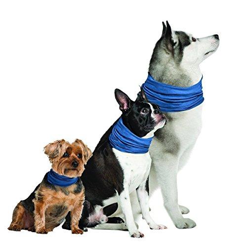 K9Chill Hund Kühlung Halsband (L/XL 50,8cm–76,2cm)