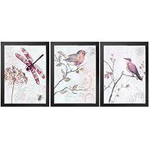Anself - Juego de Fotografía Decorativa de Pared, 3 Partes con Marco Negro, 30 x 40 cm (Libélula + Pájaro)