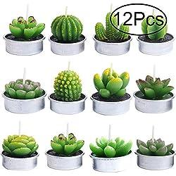 Outee 12 Velas de té de Cactus, sin Llama, aromaterapia, 12 diseños para cumpleaños, Fiestas, Bodas, decoración del hogar