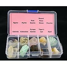10 piezas diferentes muestras Mineral Piedra con caja de plástico transparente colección Set