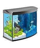 Tetra AquaArt Evolution Line LED Aquarium-Komplett-Set 130 Liter anthrazit (moderne...