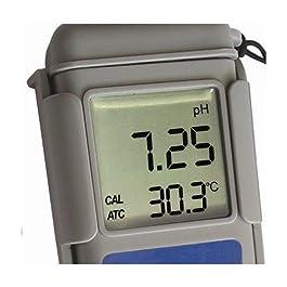 ADWA AD12 Misuratore Impermeabile pH e Tester Alta Precisione della Temperatura | Misuratore Professionale | Bevande | Acqua Potabile | Piscina | Spa | Acquario | Idroponica | Con Soluzioni Calibrazione Incluse