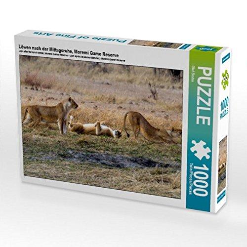 Löwen nach der Mittagsruhe, Moremi Game Reserve 1000 Teile Puzzle quer Preisvergleich