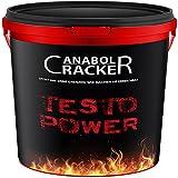 Testo Power, Whey Protein Creatin Shake, 2600g Dose, Cappuccino Geschmack, Eiweißpulver Muskelaufbau