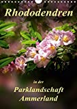 Rhododendren in der Parklandschaft Ammerland / Planer (Wandkalender 2019 DIN A4 hoch): Peter Roder mit einzigartigen Aufnahmen aus Deutschlands ... (Planer, 14 Seiten ) (CALVENDO Natur)