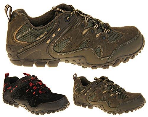Footwear Studio Northwest Territory Chaussures de Randonnée Homme Cuir Imperméable