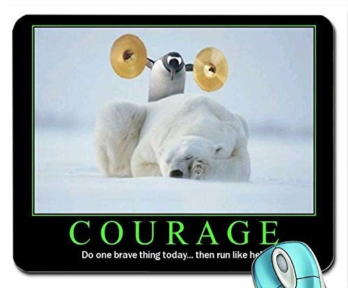 animals-penguins-courage-sleeping-cymbals-motivational-posters-polar-bears-1280x1024-wallpaper-mouse