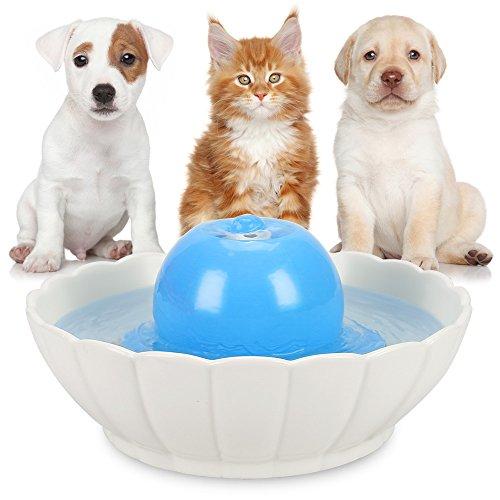 Bebedero De Mascotas De Manera Pisada Fuente Potable Para Perros De A Friendly Anself