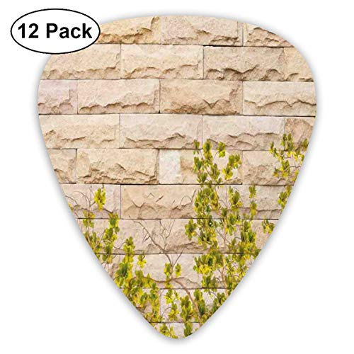 Guitar Picks - Abstract Art Colorful Designs,Ground Creepy Climbing Wood Ivy Plant Leaf On Brick Wall Nature Invasion,Unique Guitar Gift,For Bass Electric & Acoustic Guitars-12 Pack (Blue Ivy Halloween)