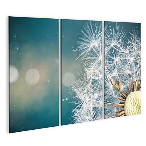 Bild Bilder auf Leinwand Nahaufnahme von Löwenzahnsamen auf blauem Naturgrund Wandbild Poster Leinwandbild RXO