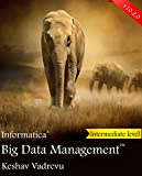 Informatica Big Data Management (Informatica Platform Book 3) (English Edition)