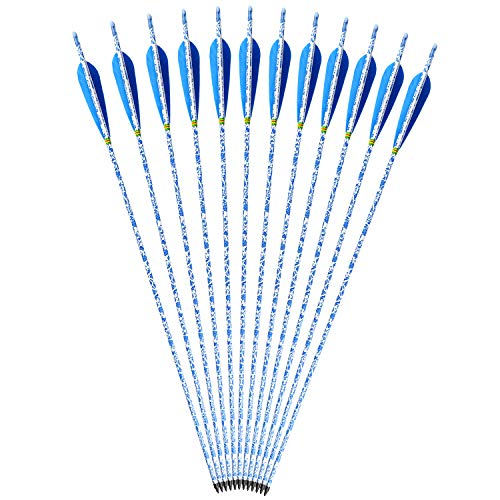 VERY100 Outdoor 12 Pack Bogenschießen Carbon Pfeile 400 Spine Hunting ersetzen Broadhead für Compound und Recurve Bow (30 Zoll)