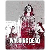 The Walking Dead Season 9 Steelbook