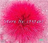 SANHOC 200 Pezzi Mix Festuca Erba Bonsai (Festuca glauca) Piante perenni Hardy Erbe Ornamentali Bonsai per la casa Giardino in Vaso Decor: 11
