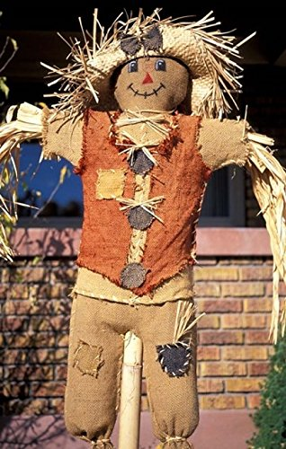The Poster Corp Scott T. Smith/DanitaDelimont - Scarecrow in Suburban Yard at Halloween Logan Utah Photo Print (27,94 x 43,18 cm)