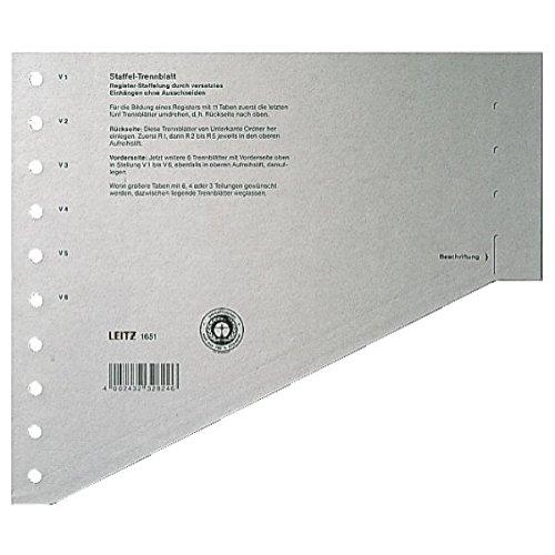 Preisvergleich Produktbild Leitz 16510085 Trennblatt, A4, gestaffelt, Karton, grau