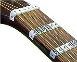FRETNOTES Aufkleber für E-gitarre oder Akustikgitarre (6-Saiten Rechtshändig) Griffbrett Notizen (25Etiketten) mit Online-Lernen Aids