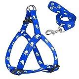 Grivey 2 in 1 Hundegeschirr Blau sicherheitsgeschirr und Schleppleine Laufgeschirr Hunde Geschirr Verstellbar Haustiere Pet Harness (Mittel (M))