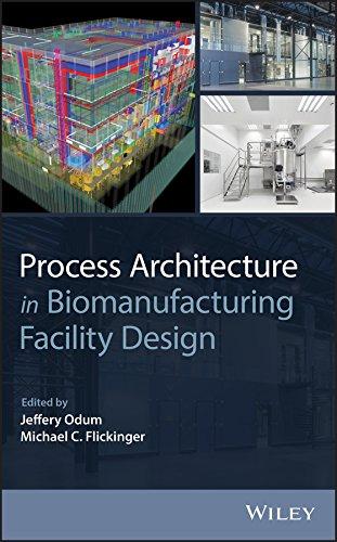 Process Architecture in Biomanufacturing Facility Design (English Edition)