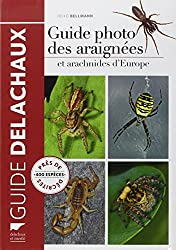 Guide photo des araignées et autres arachnides d'Europe