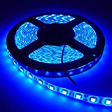 Everpro 5 Meter LED Strip 5050 Cove Light Rope Light Ceiling Light - Blue (Driver Included)
