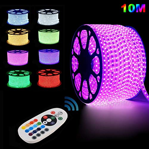GreenSun LED Lighting Flexible Led Streifen LED Strips 10m RGB LED Lichterkette Lichterschlauch Fensterbeleuchtung für Weihnachten Hochzeit Dekoration mit 24 Tasten RF Controller